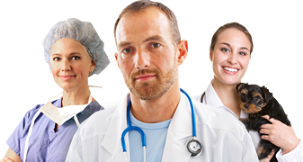 Surgeon, Doctor, Vet, Health Professionals